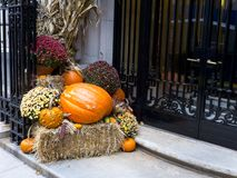 Halloween composition at the entrance of a luxury building. Residential areas with twenty stories buildings still want to participate in this popular Royalty Free Stock Image