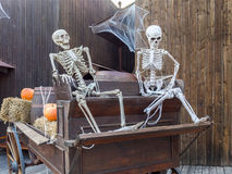Halloween composition with skeletons Royalty Free Stock Photo