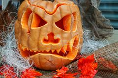 Halloween composition Royalty Free Stock Images