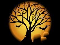 Halloween Concepet Stock Photo