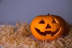 Halloween concept - big pumpkin Jack-O-Lantern over grey Stock Photo