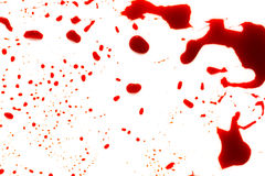Halloween concept : Blood splatter on white background . Halloween concept : Blood splatter on white background Stock Photography