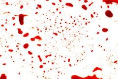 Halloween concept : Blood splatter on white background . Halloween concept : Blood splatter on white background royalty free stock photo