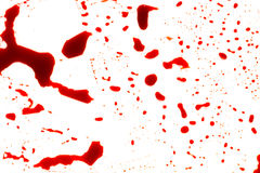 Halloween concept : Blood splatter on white background . Halloween concept : Blood splatter on white background royalty free stock photo