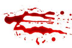 Halloween concept : Blood splatter on white background . Halloween concept : Blood splatter on white background stock image