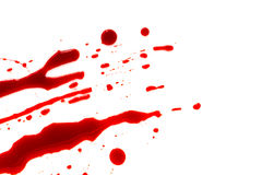 Halloween concept : Blood splatter on white background . Halloween concept : Blood splatter on white background Royalty Free Stock Photography