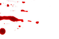 Halloween concept : Blood splatter on white background . Stock Photo