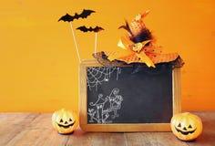 Halloween concept. Cute pumpkins next to blank blackboard Stock Photos