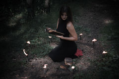 Halloween concept. Fairy in black. In the witchy. Circle. With a book of spells in hand. Looks up. Among woods and trees. Sideways Stock Photo