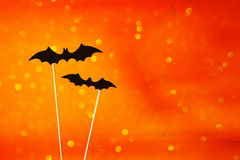 Halloween concept. Funny bats. Glitter overlay Royalty Free Stock Photo