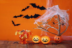 Halloween concept. pumpkins, candy and tree with bats Royalty Free Stock Photo