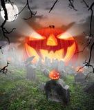 Halloween concept Royalty Free Stock Photos