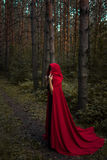 Halloween concept. A witch in red among. The pines. Witchcraft and magic. Photo for your design Royalty Free Stock Image