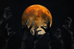 Halloween concept, zombie hand coming out Stock Images