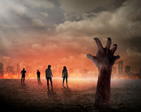 Halloween concept. Zombie hand rising out from the ground Royalty Free Stock Image