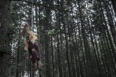 Scarecrow hanged from a tree branch in sinister forest. Halloween context with a shabby scarecrow hanged with a rope from a branch, in a dark, sinister forest stock image