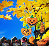 Halloween cookies hanging on a tree Royalty Free Stock Images