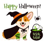 Halloween corgi puppy dog wearing witch costume with black hat a. Nd cape, cauldron brewing bubbling green potion cartoon illustration isolated on white. Funny royalty free illustration