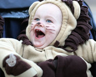 Halloween costume. Boy dressed up in lion costume for Halloween royalty free stock image
