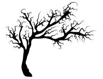 Halloween creepy scary bare tree vector symbol icon design. Beautiful illustration isolated on white background Royalty Free Stock Photography