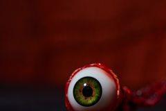 Halloween. Creepy skulls and spooky eyes keep watch on Halloween Royalty Free Stock Images