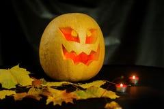 Halloween - cric-o-lanterne de potiron sur le fond noir Photos stock