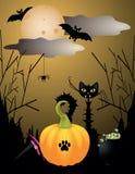 Halloween critters. With cat, Moon, bat, pumpkin Stock Photos