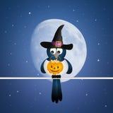 Halloween crow Stock Photography