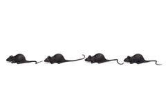 Halloween - cuatro Toy Mice en fila - aislado en blanco Imagen de archivo libre de regalías