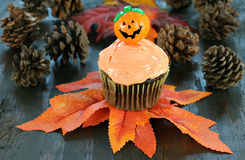 Halloween cupcake on fall leaves. Royalty Free Stock Photo