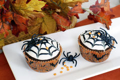 Halloween cupcakes Stock Photography