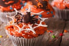 Halloween cupcakes with chocolate spider close-up. horizontal Stock Photos
