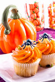 Halloween cupcakes decorated with toy plastic spiders Stock Images