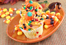 Halloween cupcakes in a fall festive setting. Royalty Free Stock Photography