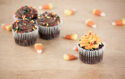 Halloween Cupcakes. Holiday cupcakes for halloween. Mini cupcakes Stock Photos