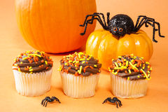 Halloween Cupcakes with Spiders Royalty Free Stock Photo