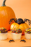 Halloween Cupcakes with Spiders Royalty Free Stock Photos