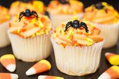 Halloween Cupcakes Royalty Free Stock Photos