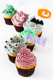 Halloween cupcakes  on white background Stock Photography