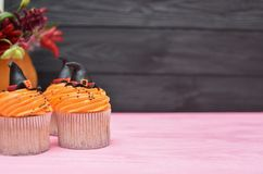 Halloween cupcakes. Witch`s hat cupcake. Halloween treats on woo royalty free stock photo