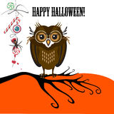 Halloween with cute owl, spider and candy Stock Image