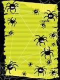 Halloween Cute Spider Stock Image