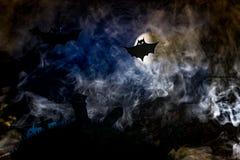 Halloween, czarownica na broomstick w tle księżyc Zdjęcia Stock