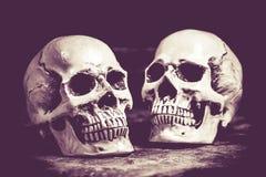 halloween czaszka Fotografia Royalty Free