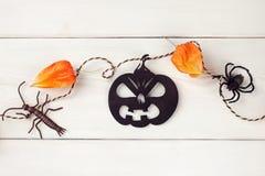 Halloween, días de fiesta y concepto de la decoración - Jack-o-linterna o calabazas talladas con el physalis y las arañas - guirn Imagenes de archivo
