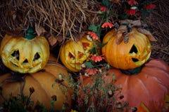 halloween dźwigarki latarniowa o bania Obrazy Royalty Free