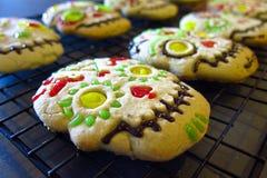 Halloween-Dag van de volkomen bevroren koekjes Stock Foto's