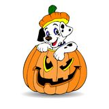 Halloween. Dalmatian dog sitting in a pumpkin. Cartoon on a whit Stock Images