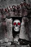 Halloween, dark,grunge, rock background Royalty Free Stock Photo