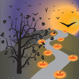 Halloween day. Halloween night of frame on halloween day Royalty Free Stock Images